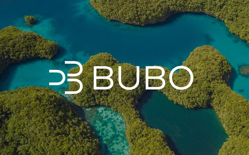 riaditeľ BUBO