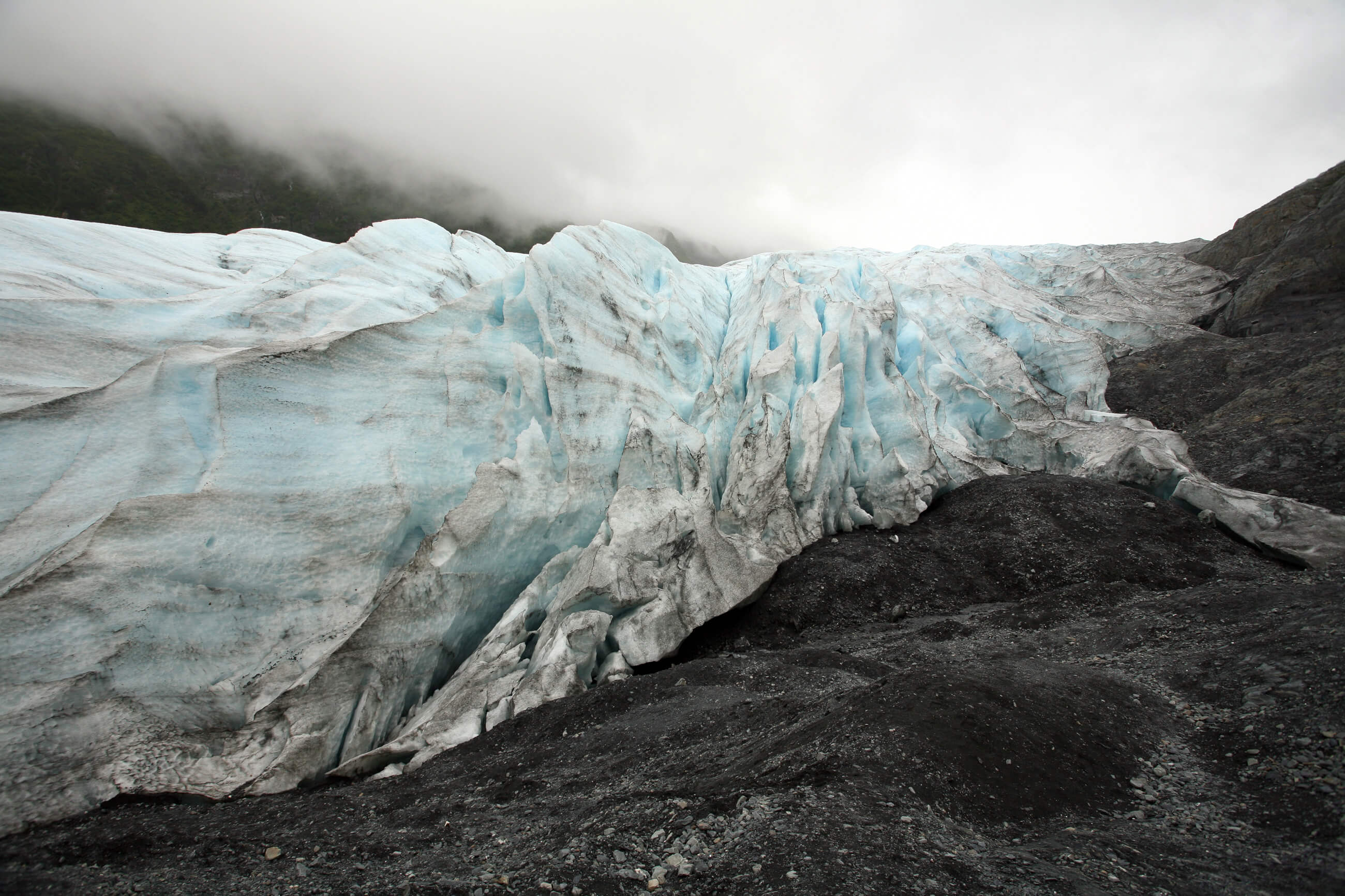 https://bubo.sk/uploads/galleries/16048/aljaska_photos_brian_adams_kenai_fjords_national_park_110.jpg-24.jpg