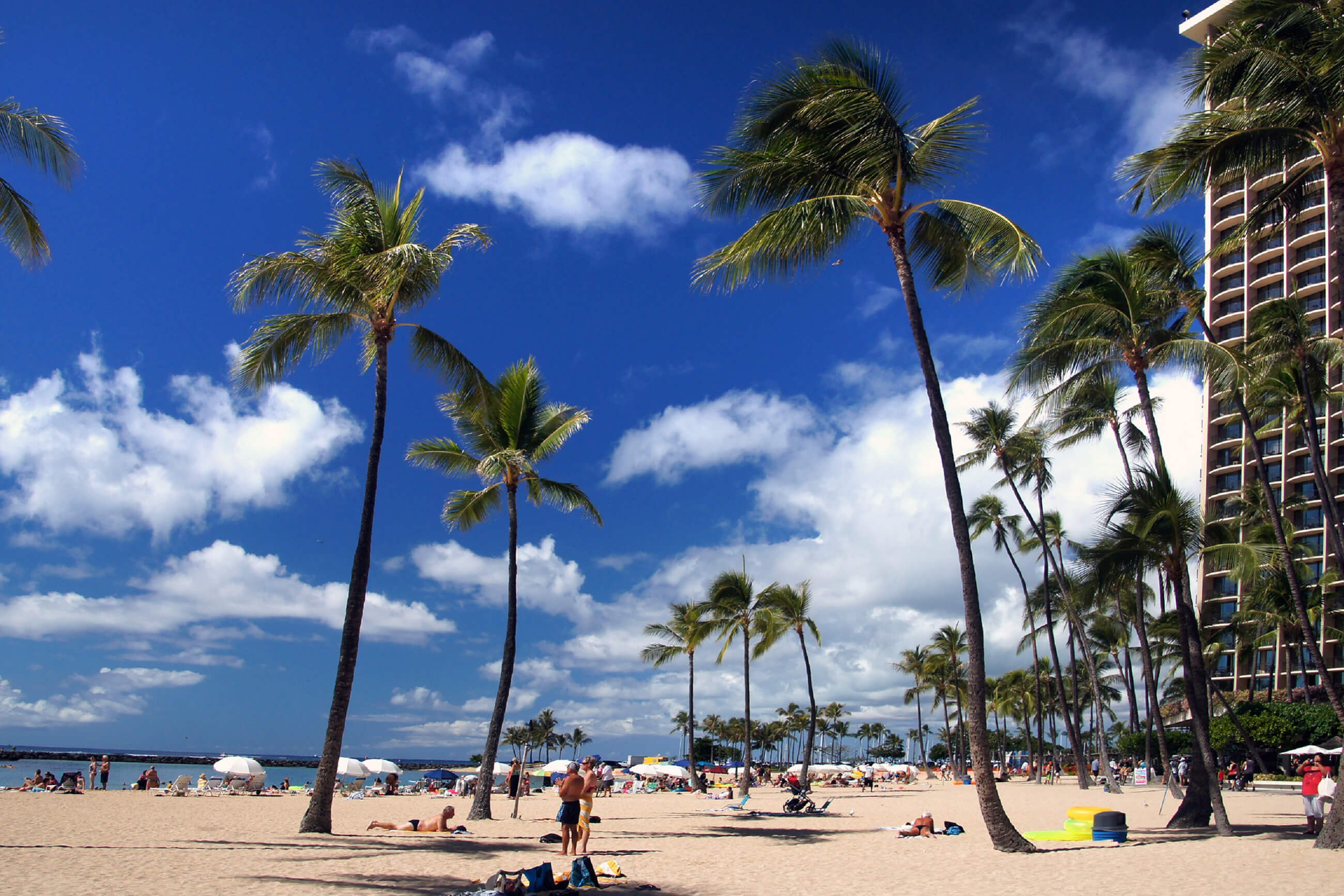 https://bubo.sk/uploads/galleries/16052/pxb_havaj_hawaii-3700185.jpg