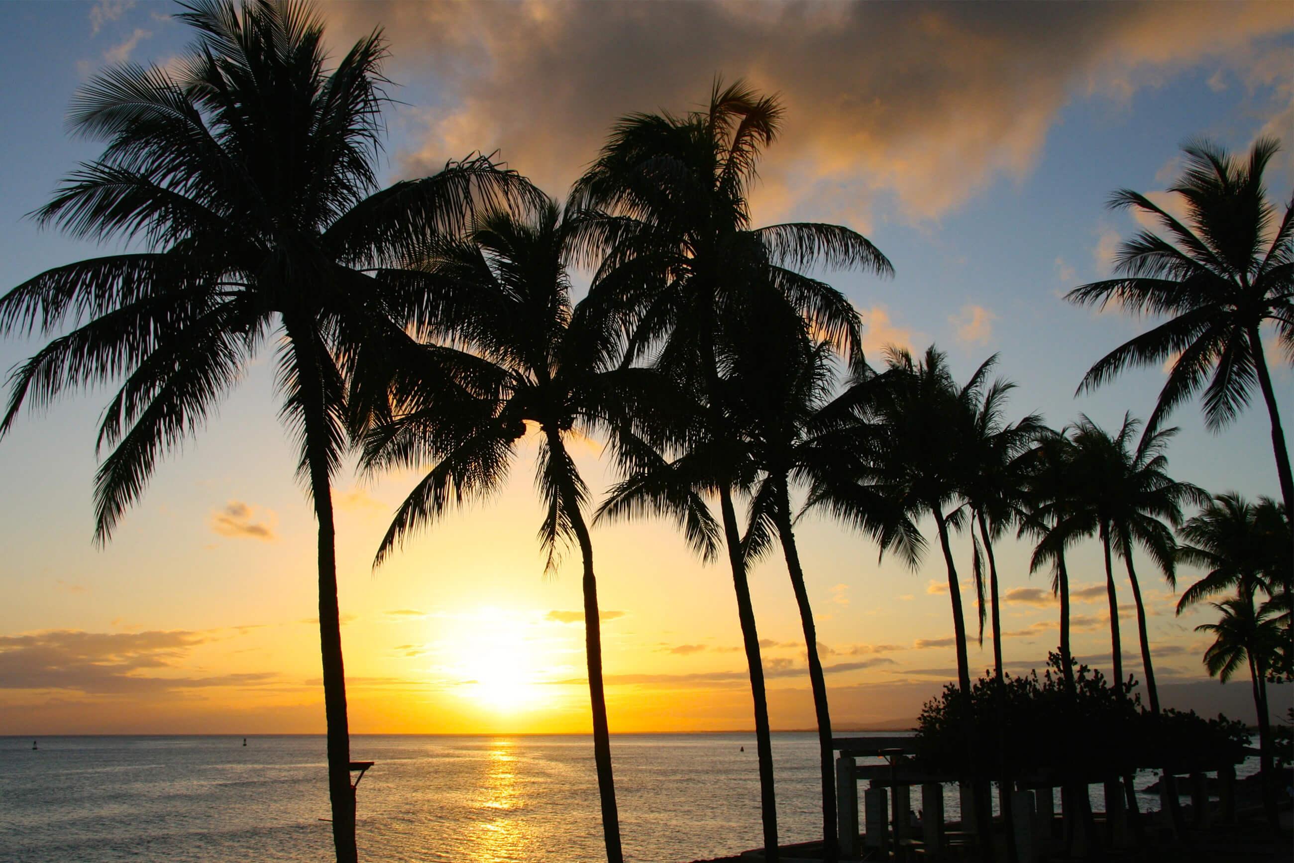 https://bubo.sk/uploads/galleries/16052/pxb_havaj_sunset-683294.jpg