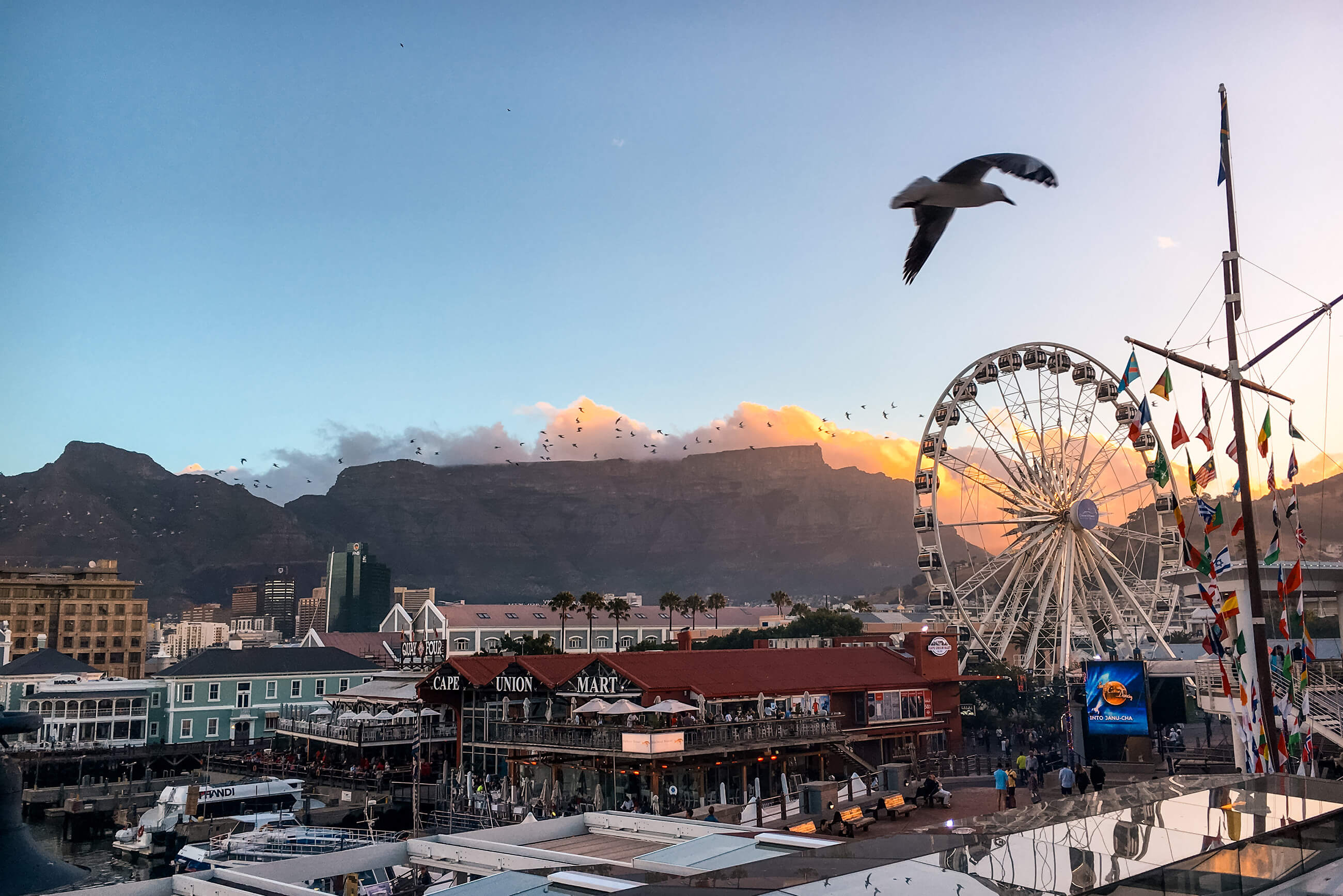 https://bubo.sk/uploads/galleries/16228/jar_capetown_waterfront_xdck9926-30.jpg