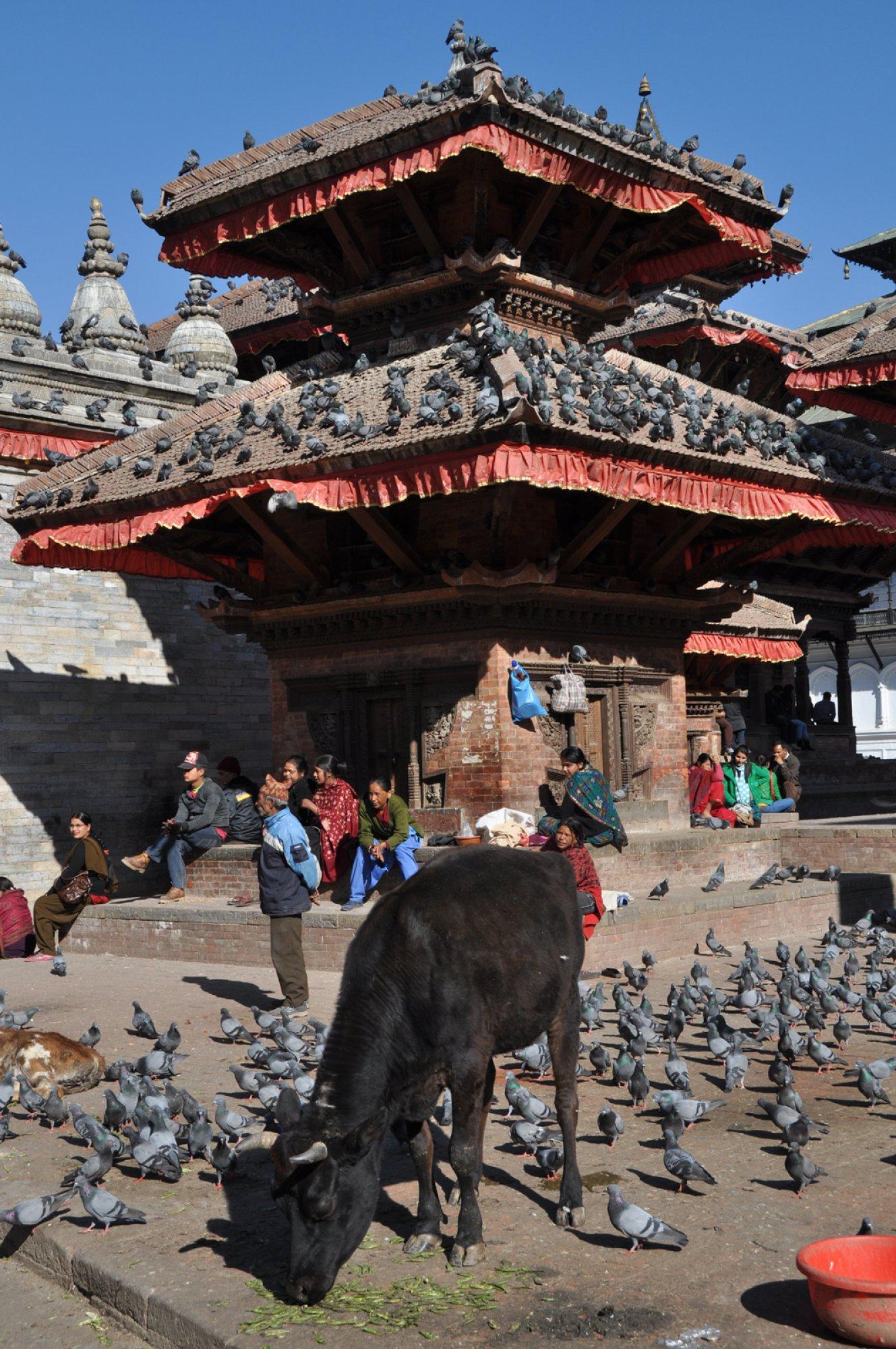 https://bubo.sk/uploads/galleries/16319/nepal-kathmandu-tomas-kubus.jpg