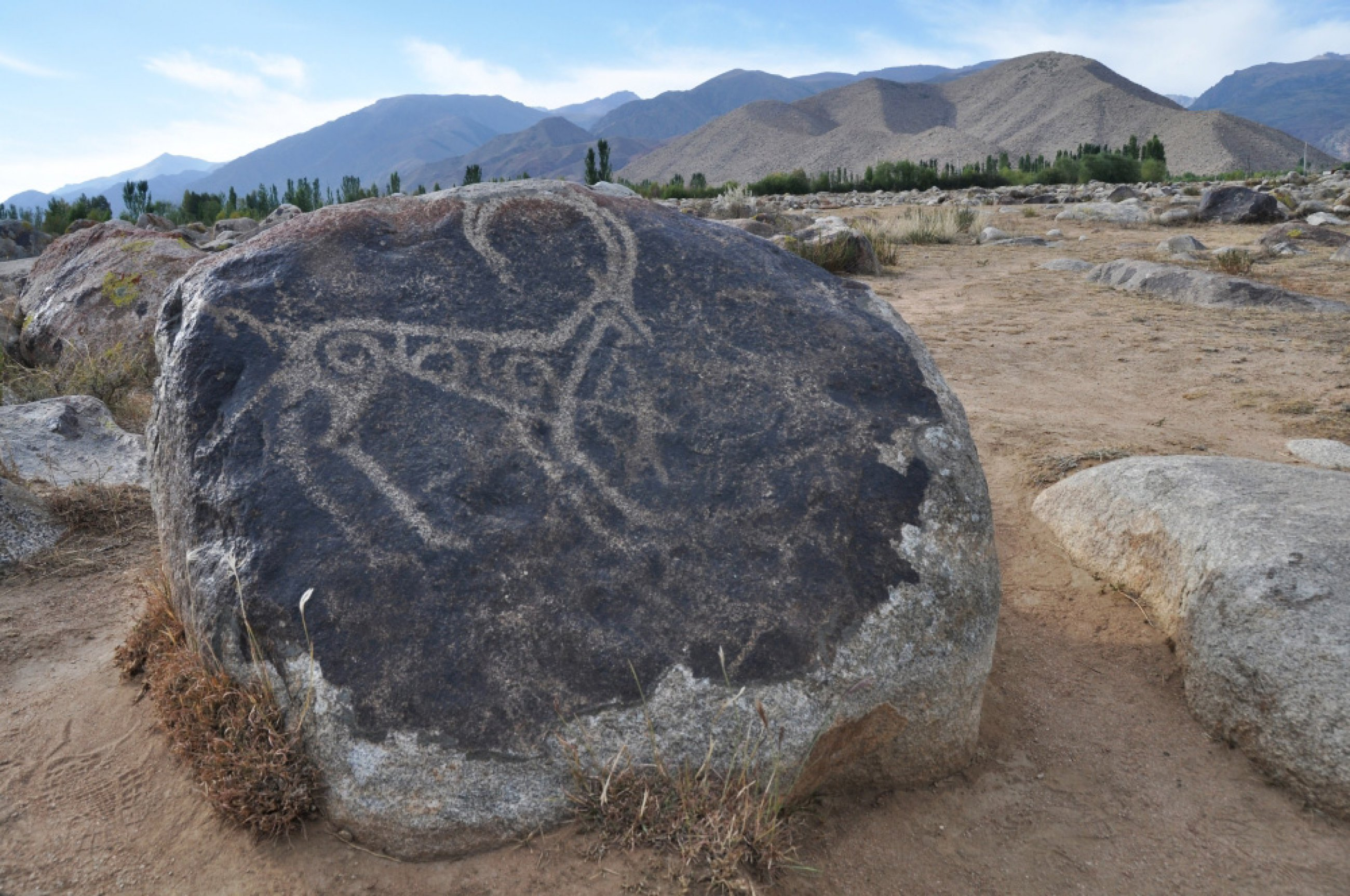 https://bubo.sk/uploads/galleries/3470/kirgizstan-15.jpg