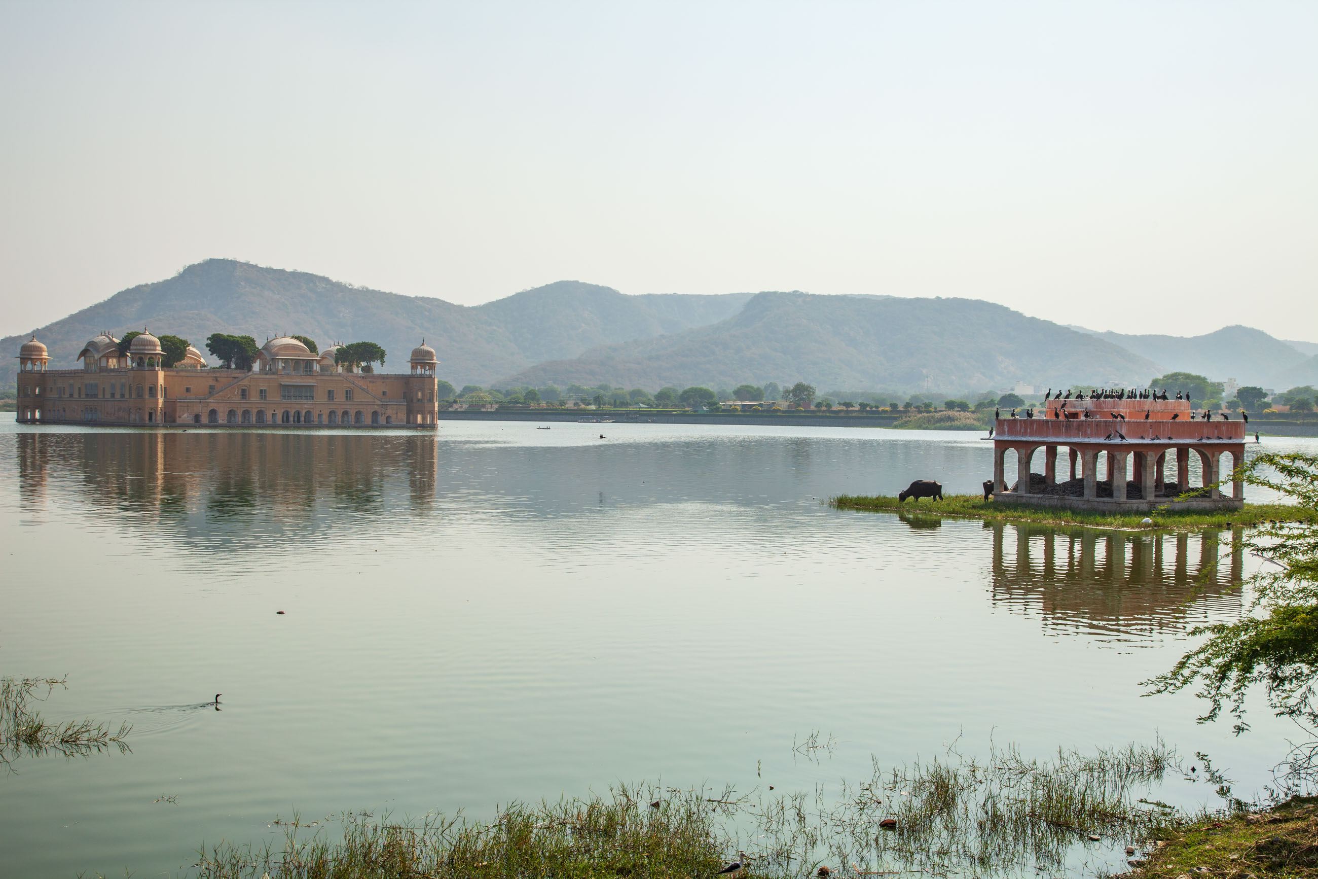 https://bubo.sk/uploads/galleries/4917/samuelklc_india_jaipur_jalmahal_img_0162.jpg