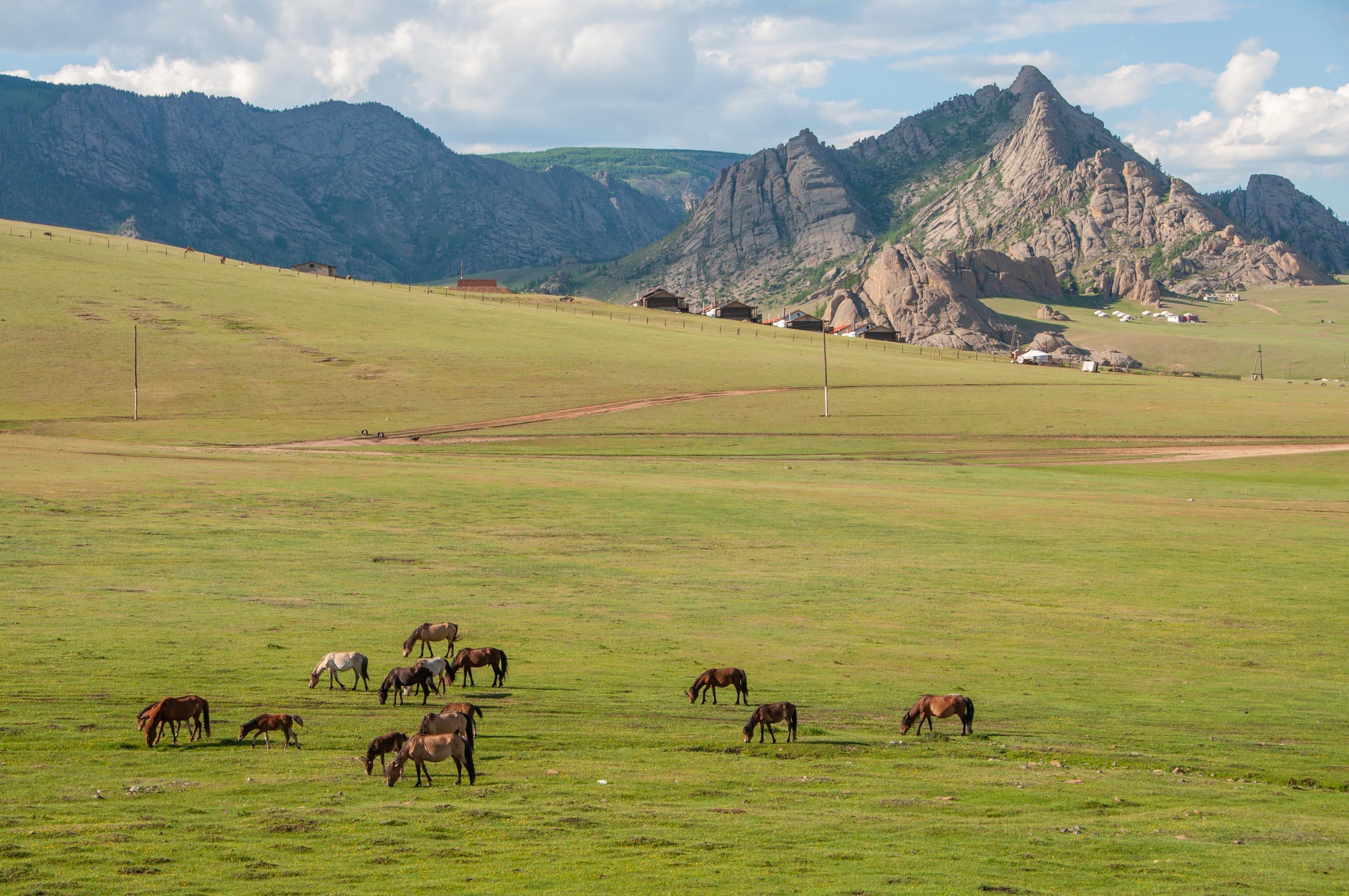 https://bubo.sk/uploads/galleries/4924/tomaskubus_mongolsko_terelj_mongolska_krajina_transsib.jpg