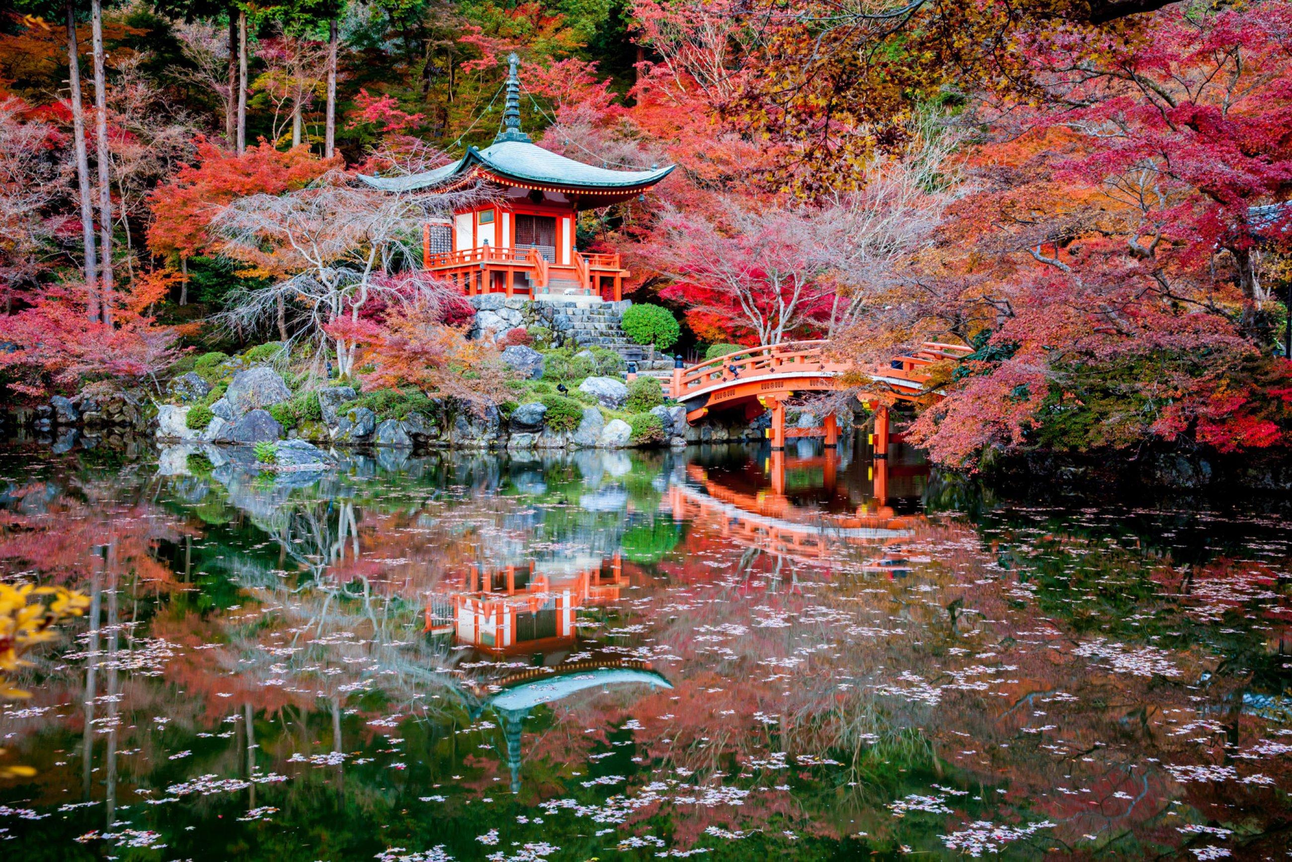 https://bubo.sk/uploads/galleries/4930/japonsko-daigoji-temple-japan.jpg
