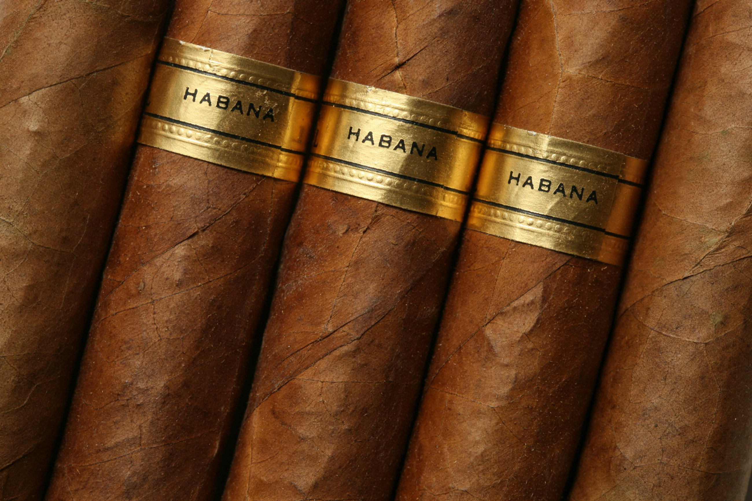 https://bubo.sk/uploads/galleries/5009/cigary-havana.jpg