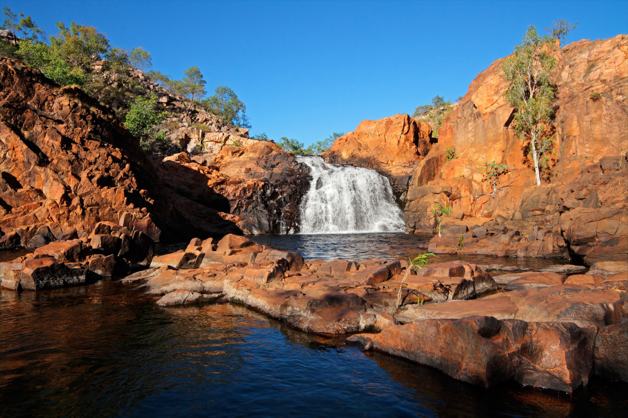 https://bubo.sk/uploads/galleries/5028/kakadu-australia-shutterstock-126777269.jpg
