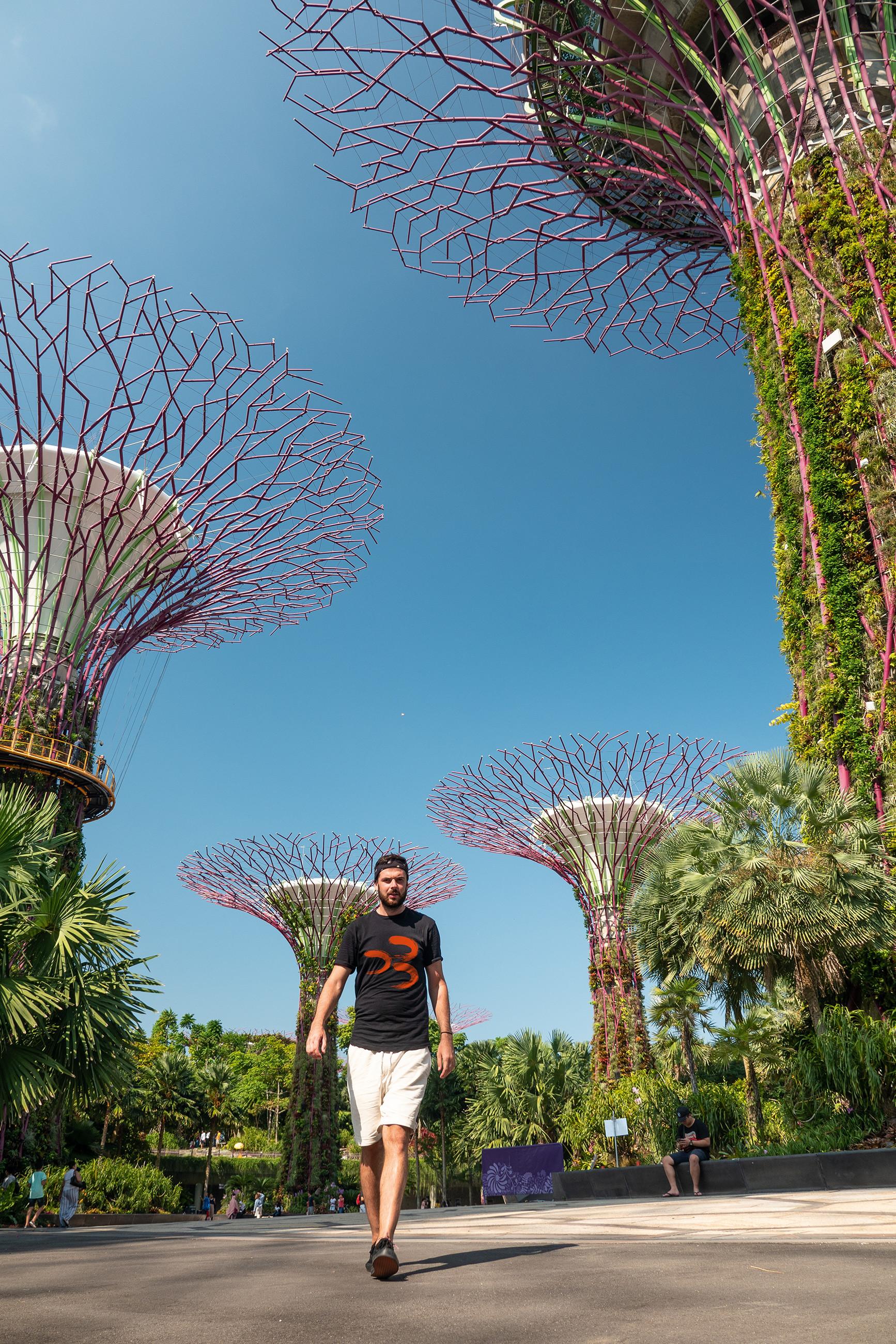 https://bubo.sk/uploads/galleries/5035/martinsimko_singapur_p1411826-1.jpg