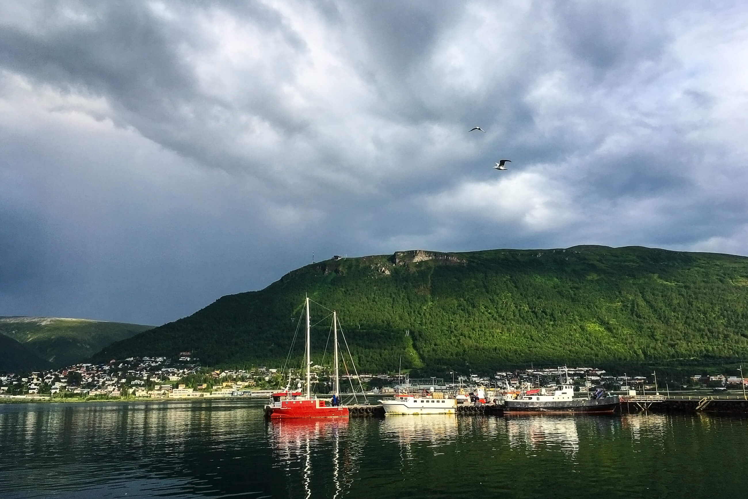 https://bubo.sk/uploads/galleries/5044/adamchylik_norsko_tromso-storsteinen-421m.jpg