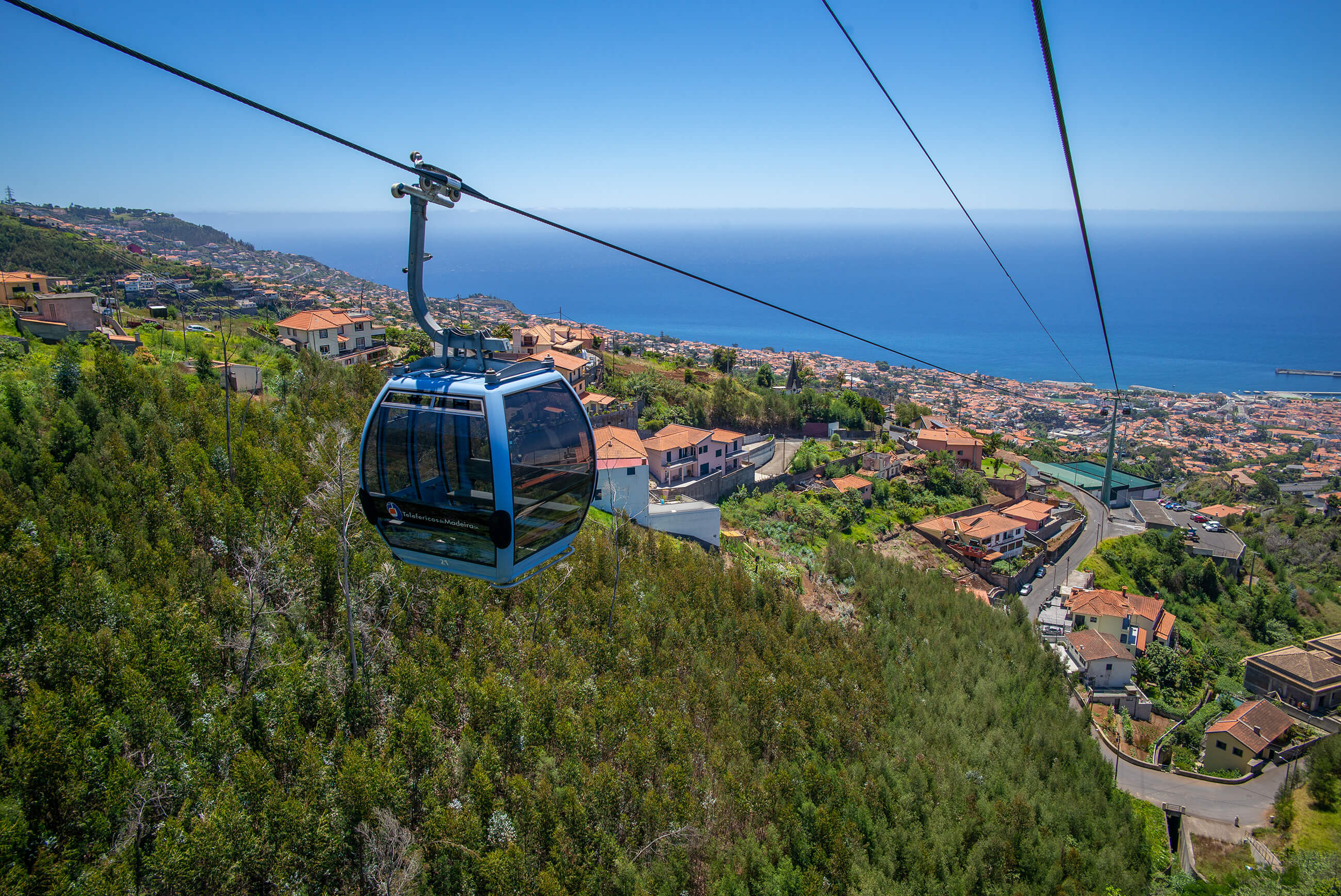 https://bubo.sk/uploads/galleries/5052/lubos_fellner_portugalsko_madeira_l1000328.jpg