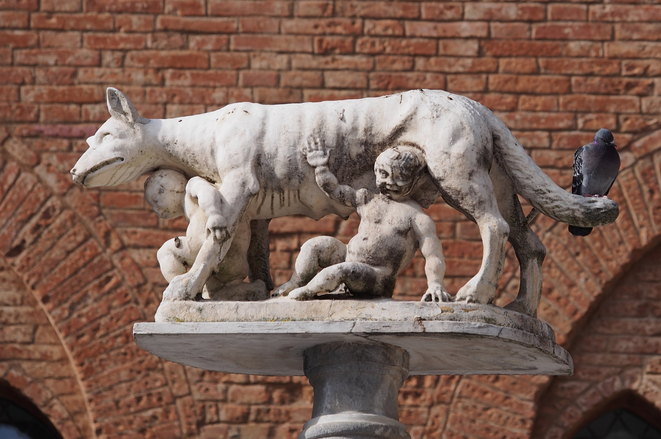 https://bubo.sk/uploads/galleries/5053/capitoline-wolf-at-siena-duomo.jpg