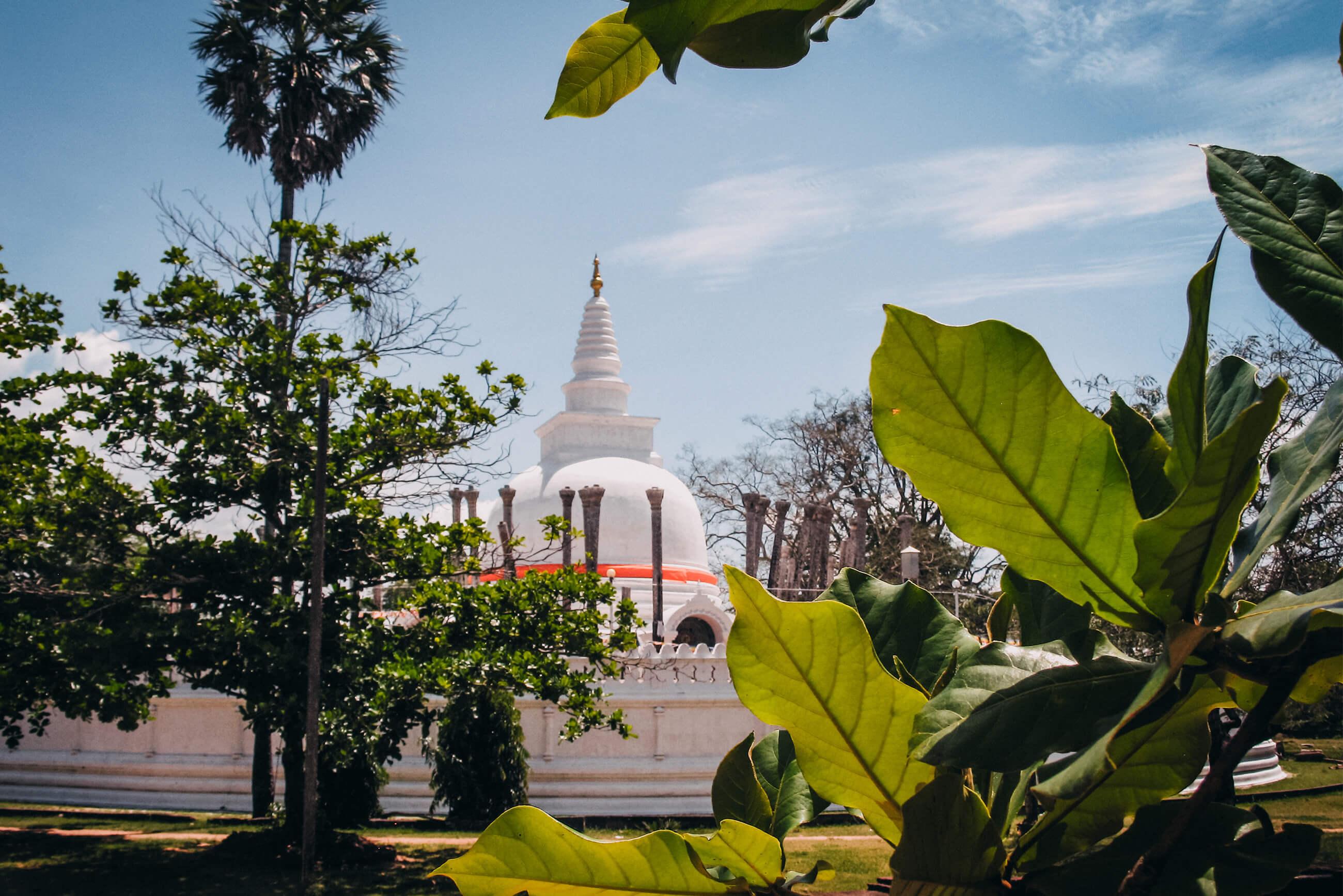 https://bubo.sk/uploads/galleries/5058/archiv_misogaj_srilanka_img_4768.jpg