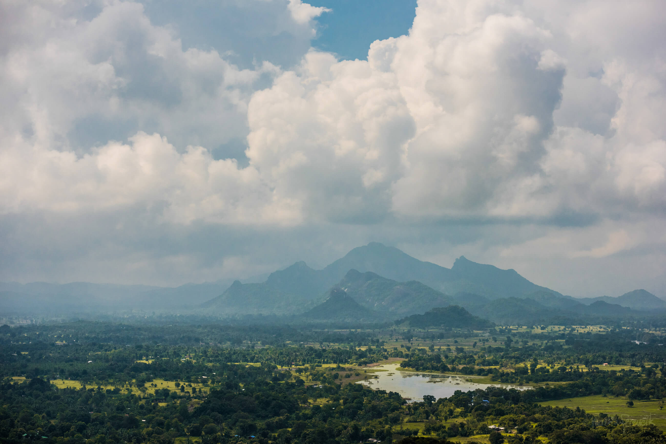 https://bubo.sk/uploads/galleries/5058/martinferencik_srilanka_dsc9878.jpg