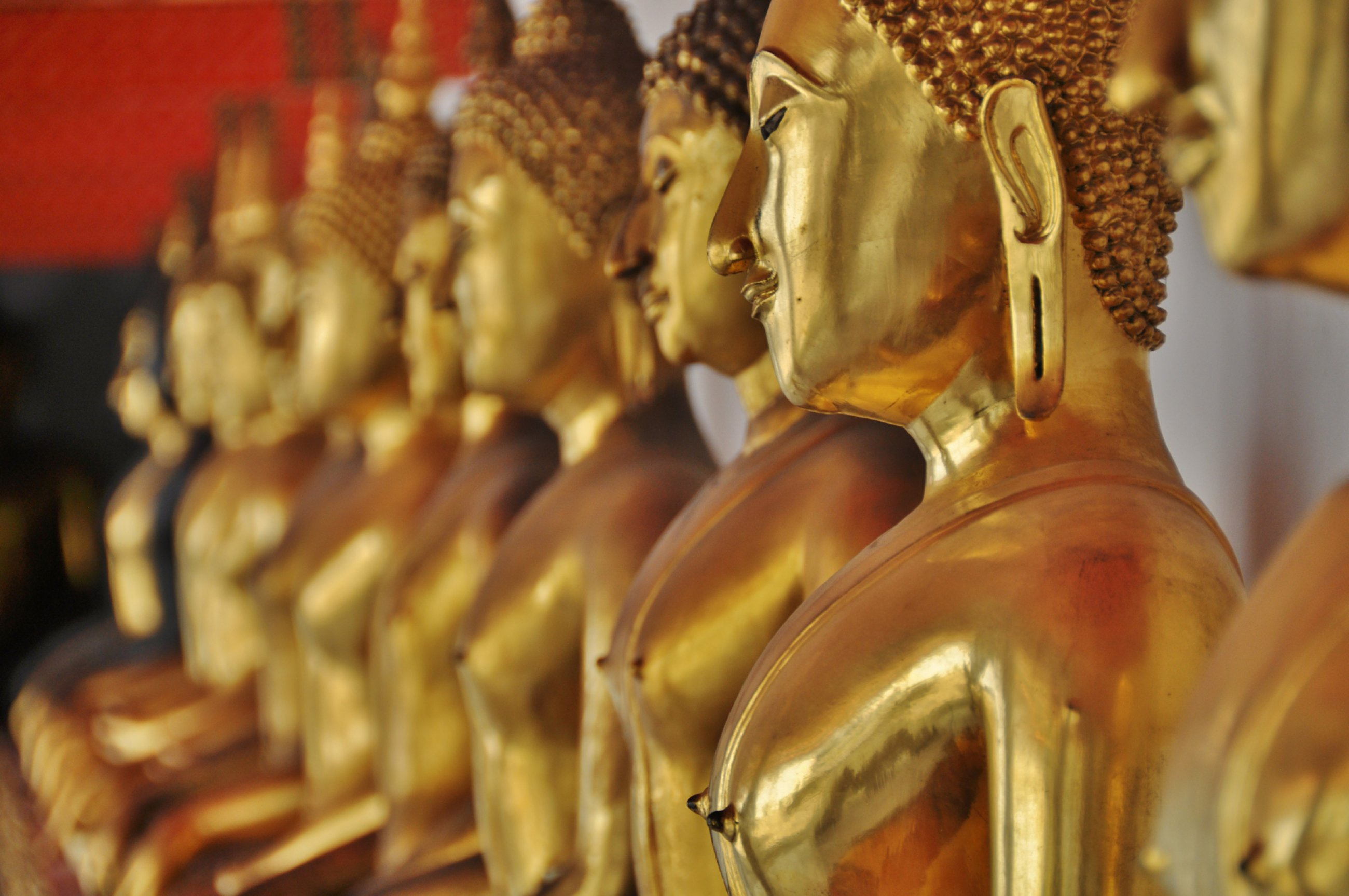 https://bubo.sk/uploads/galleries/5064/bkk-tomas-kubus-bangkok-2014-3-.jpg