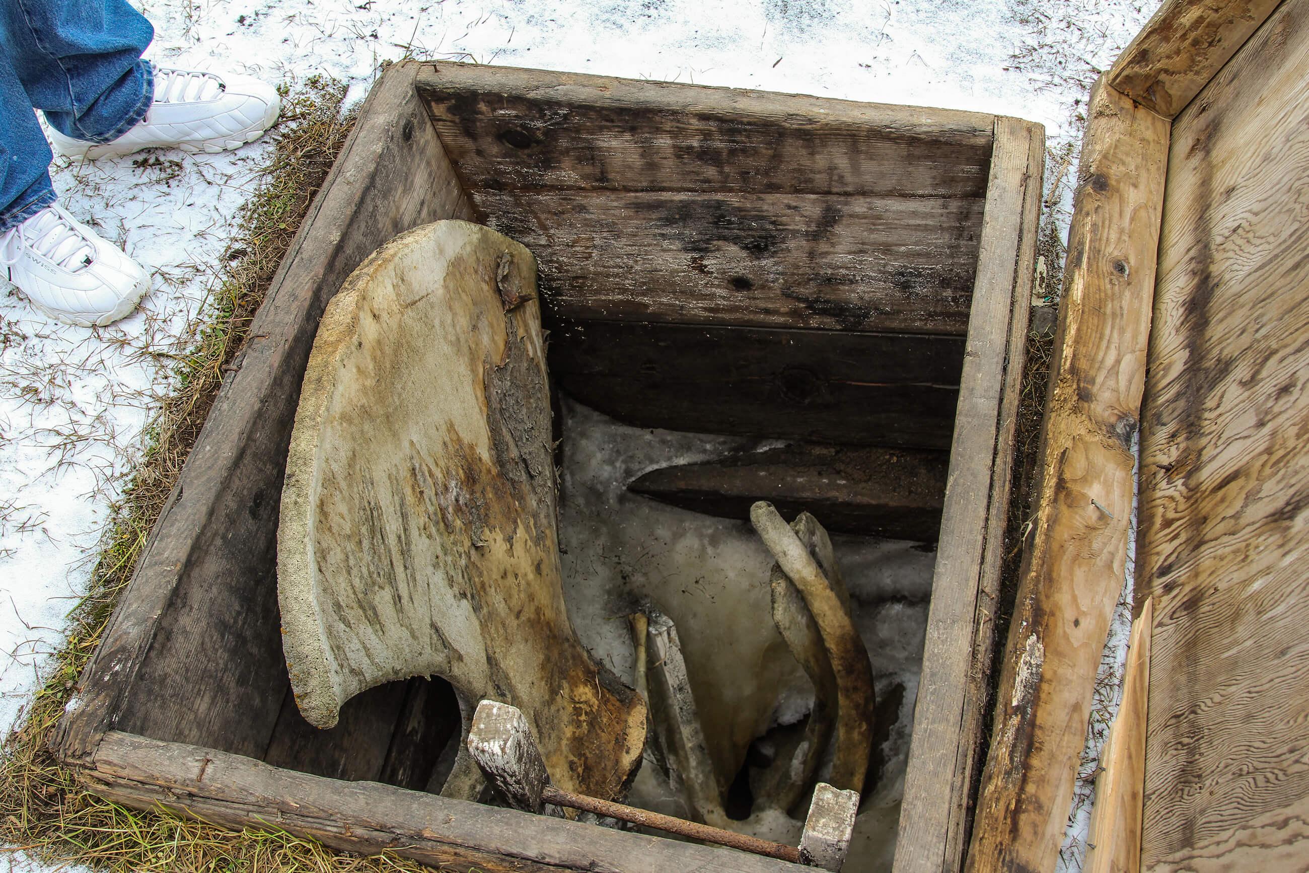 https://bubo.sk/uploads/galleries/7325/barrow-opustena-permafrost-chladnicka-1.jpg