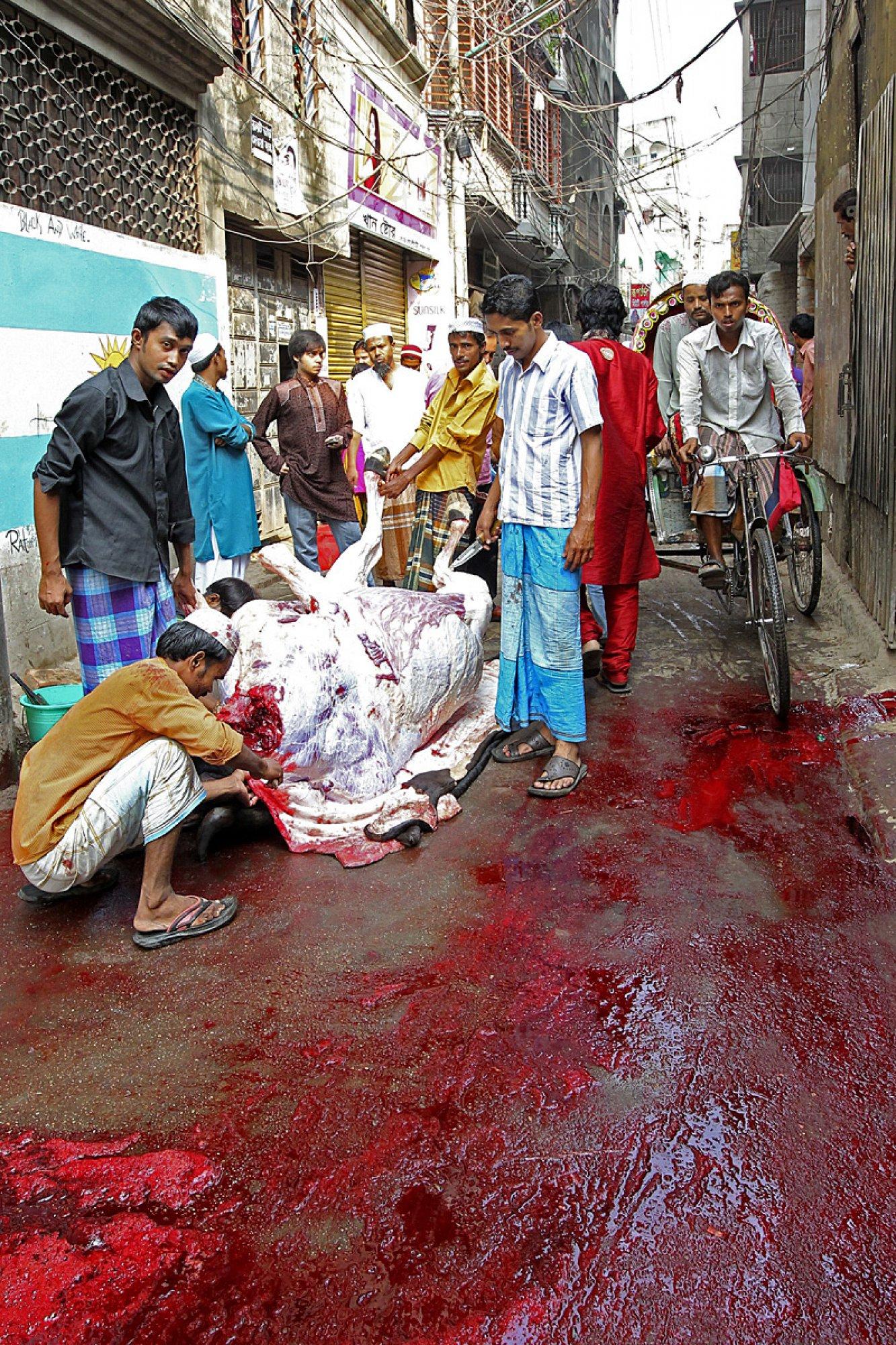https://bubo.sk/uploads/galleries/7333/dusan-valovic-banglades-sviatok-obetovania-1.jpg