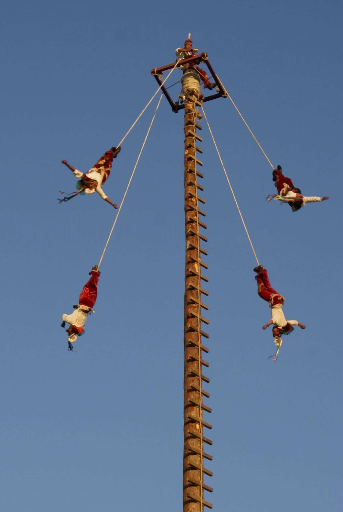 https://bubo.sk/uploads/galleries/7336/voladores-2.jpg