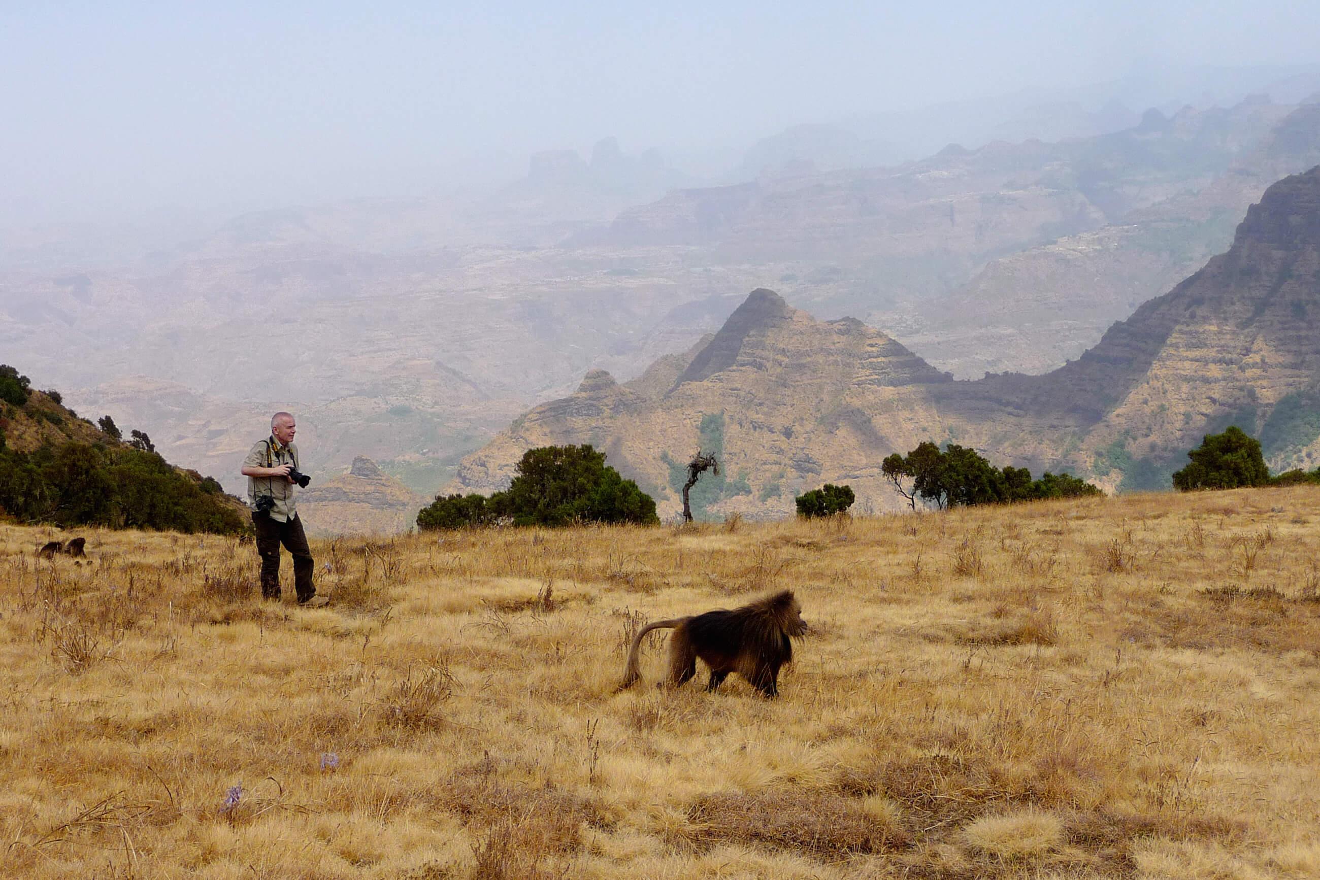 https://bubo.sk/uploads/galleries/7392/archiv_etiopia_p1290371.jpg