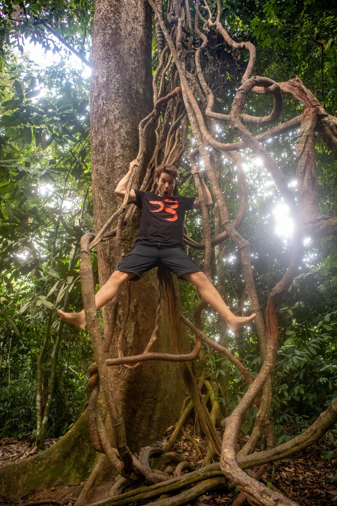 https://bubo.sk/uploads/galleries/7396/tomashornak_indonezia_sumatra_img_0120-1-8.jpg