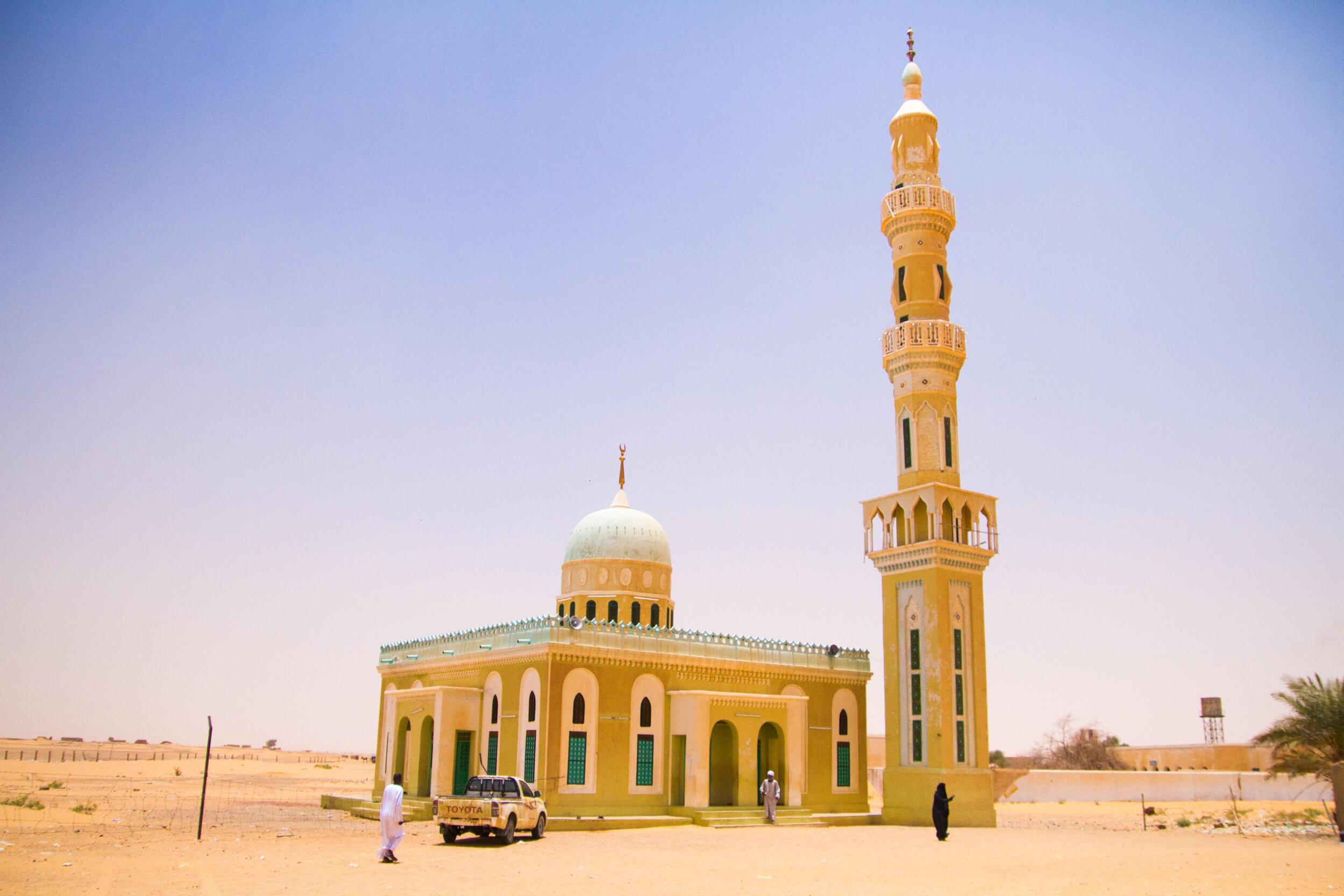 https://bubo.sk/uploads/galleries/7407/marekmeluch_sudan_desertmos.jpg