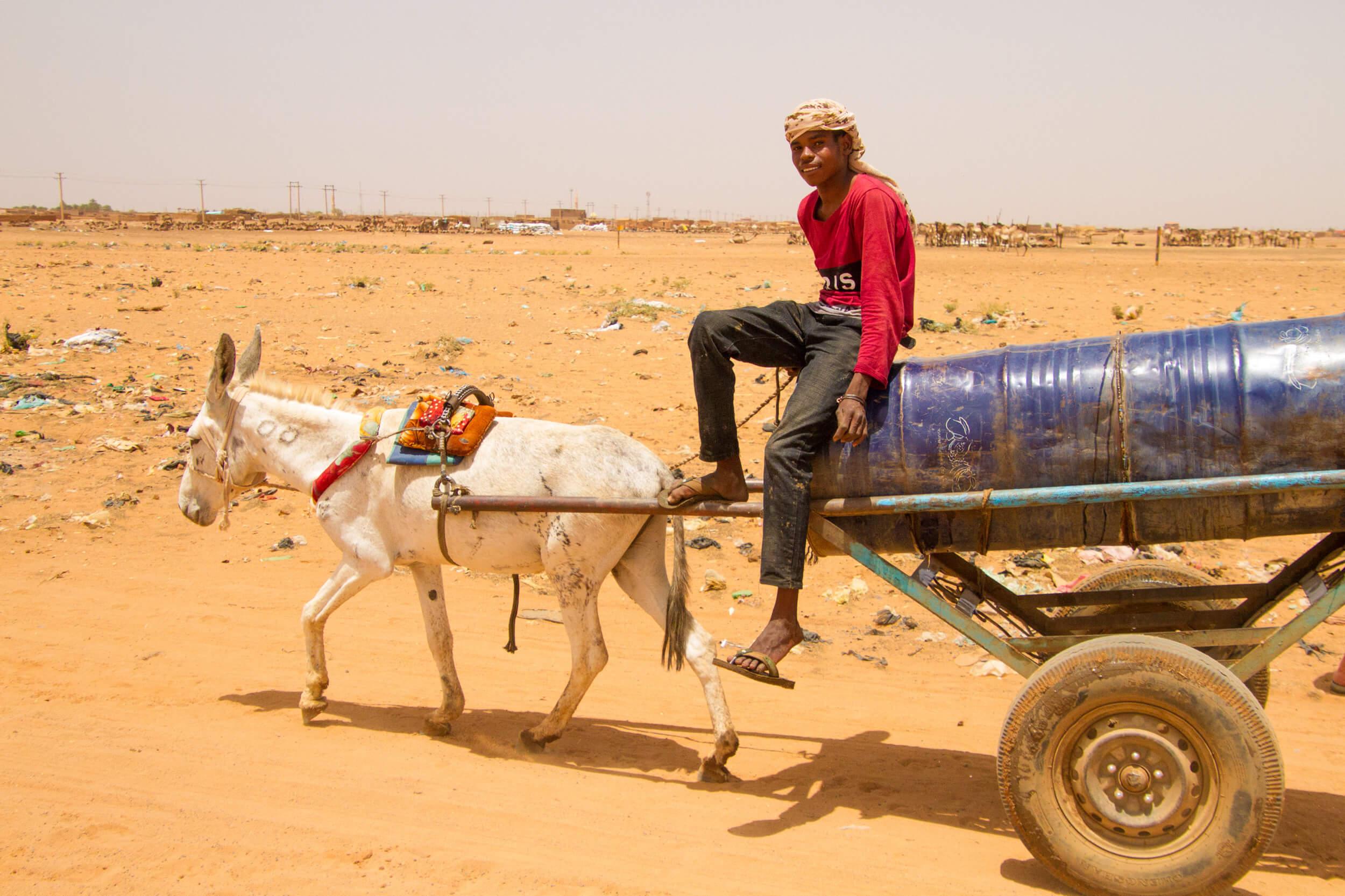 https://bubo.sk/uploads/galleries/7407/marekmeluch_sudan_khartoum_almoheli1.jpg