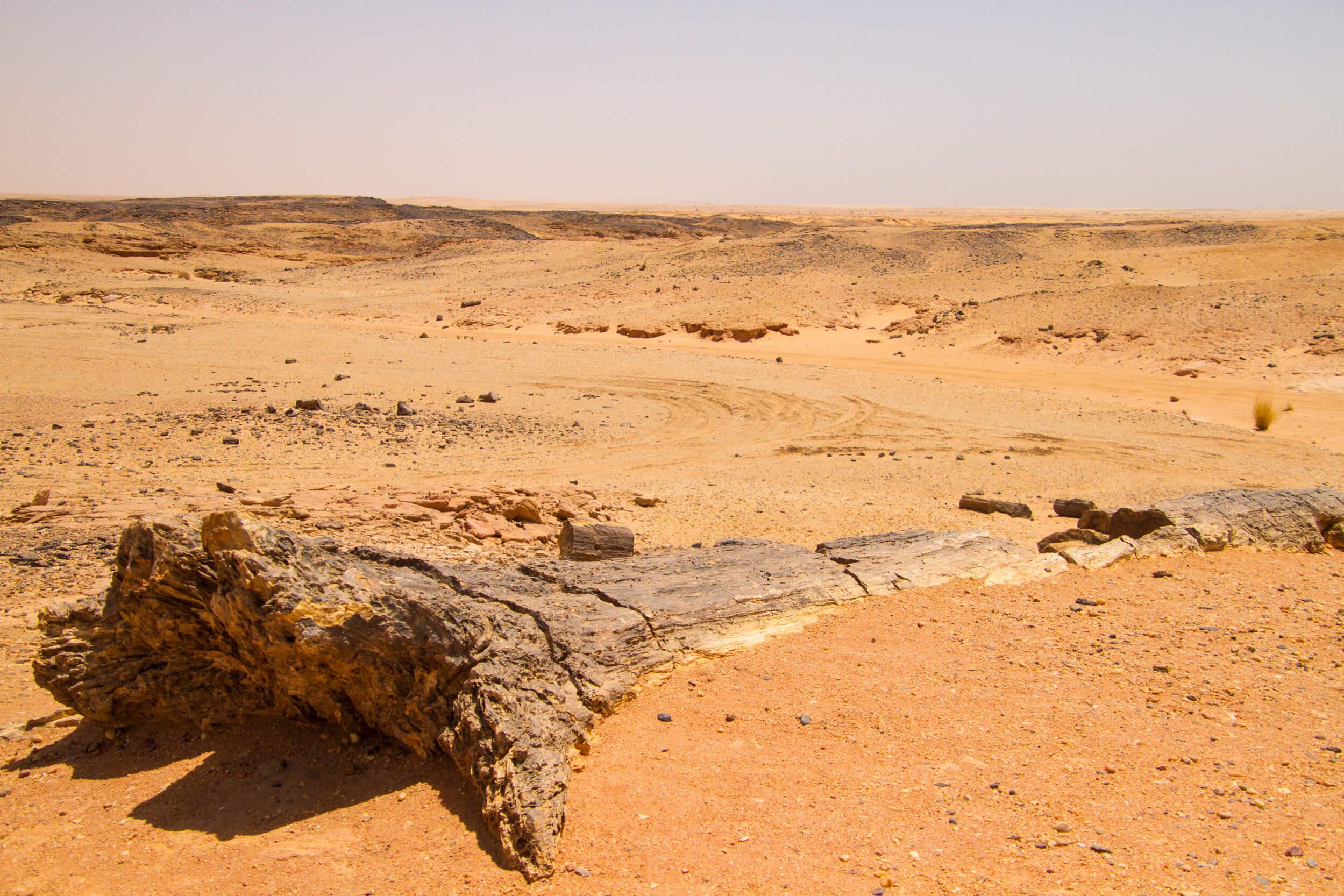 https://bubo.sk/uploads/galleries/7407/marekmeluch_sudan_petrifiedforest_karima.jpg