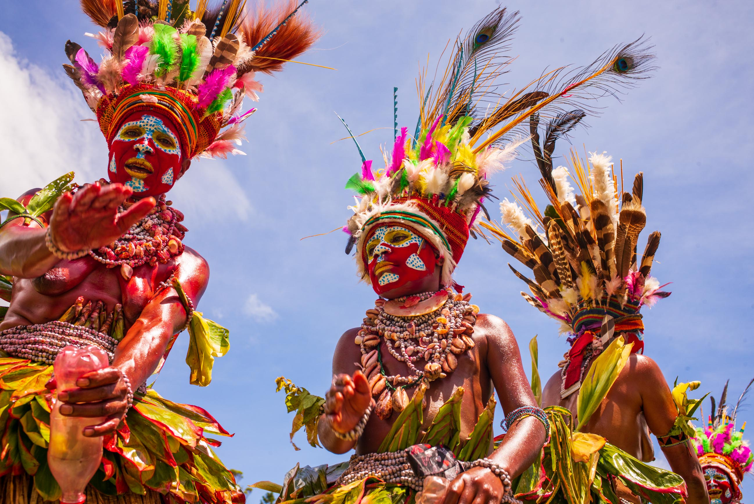 https://bubo.sk/uploads/galleries/7442/lubosfellner_papuanovaguinea_l1008984.jpg