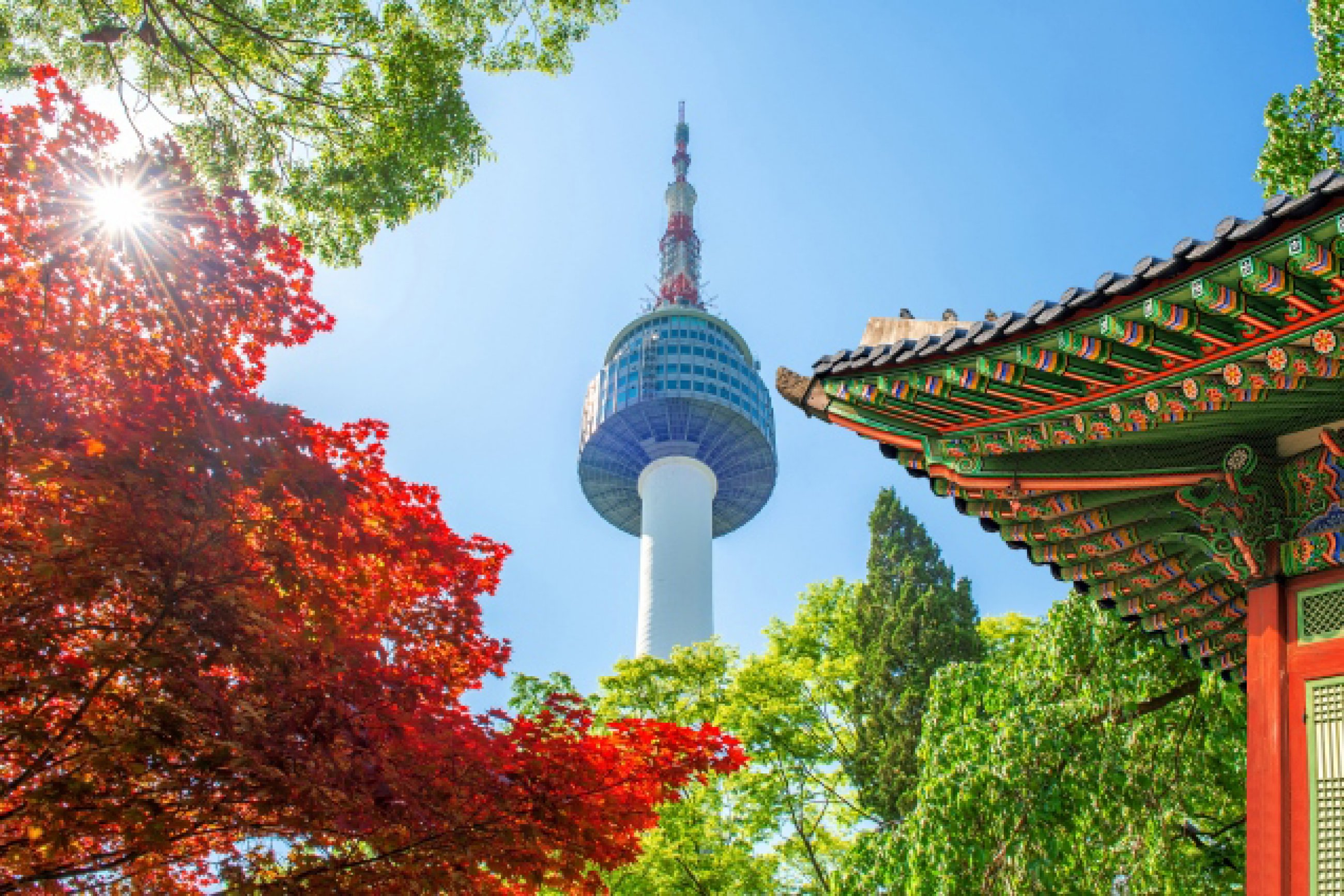 https://bubo.sk/uploads/galleries/7452/seoul-tower-with-gyeongbokgung-roof-and-red-autumn-maple-leaves-at-namsan-mountain-in-south-korea.jpg
