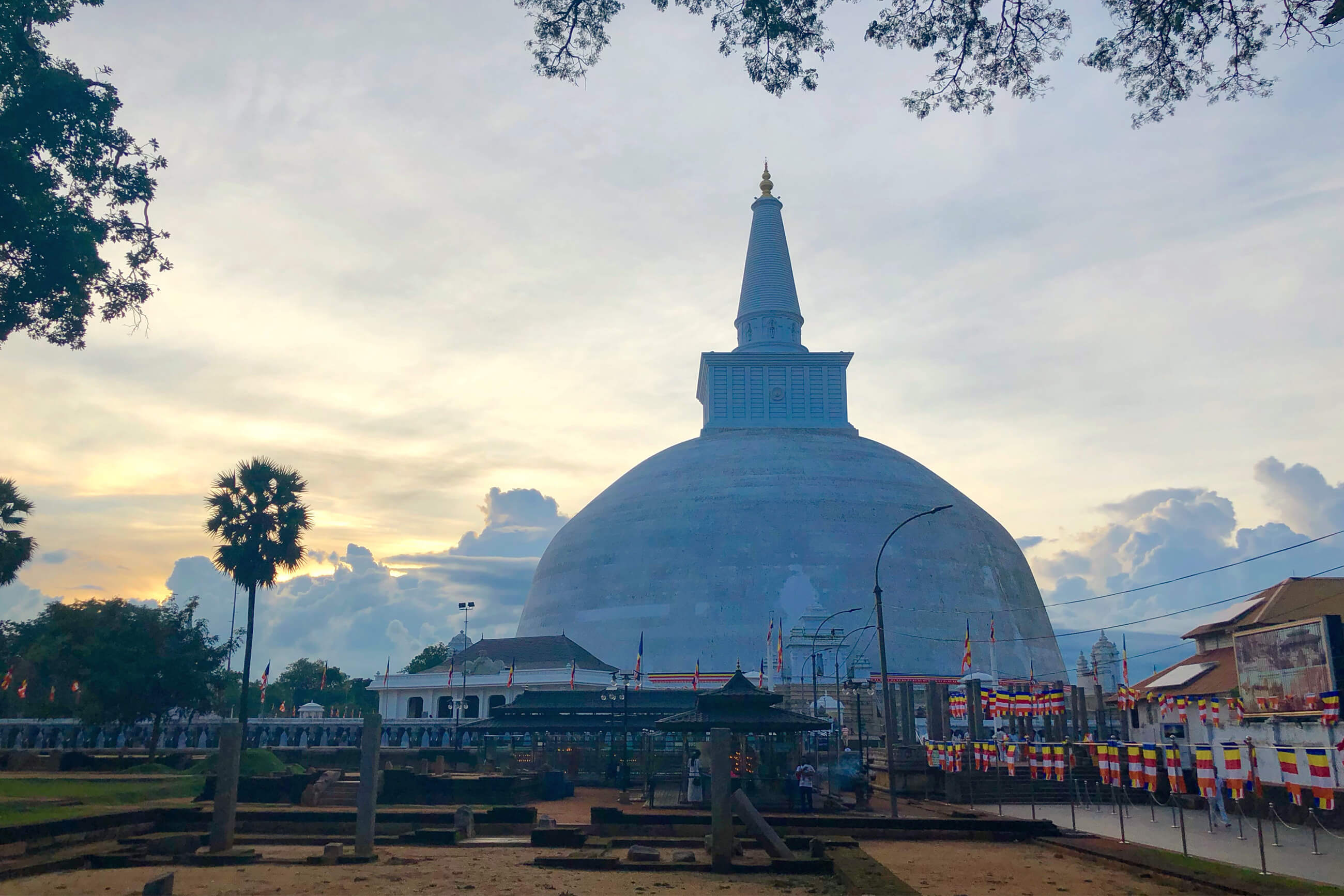 https://bubo.sk/uploads/galleries/7521/martinferencik_srilanka_photo-03-02-2019-13-24-28-1.jpg