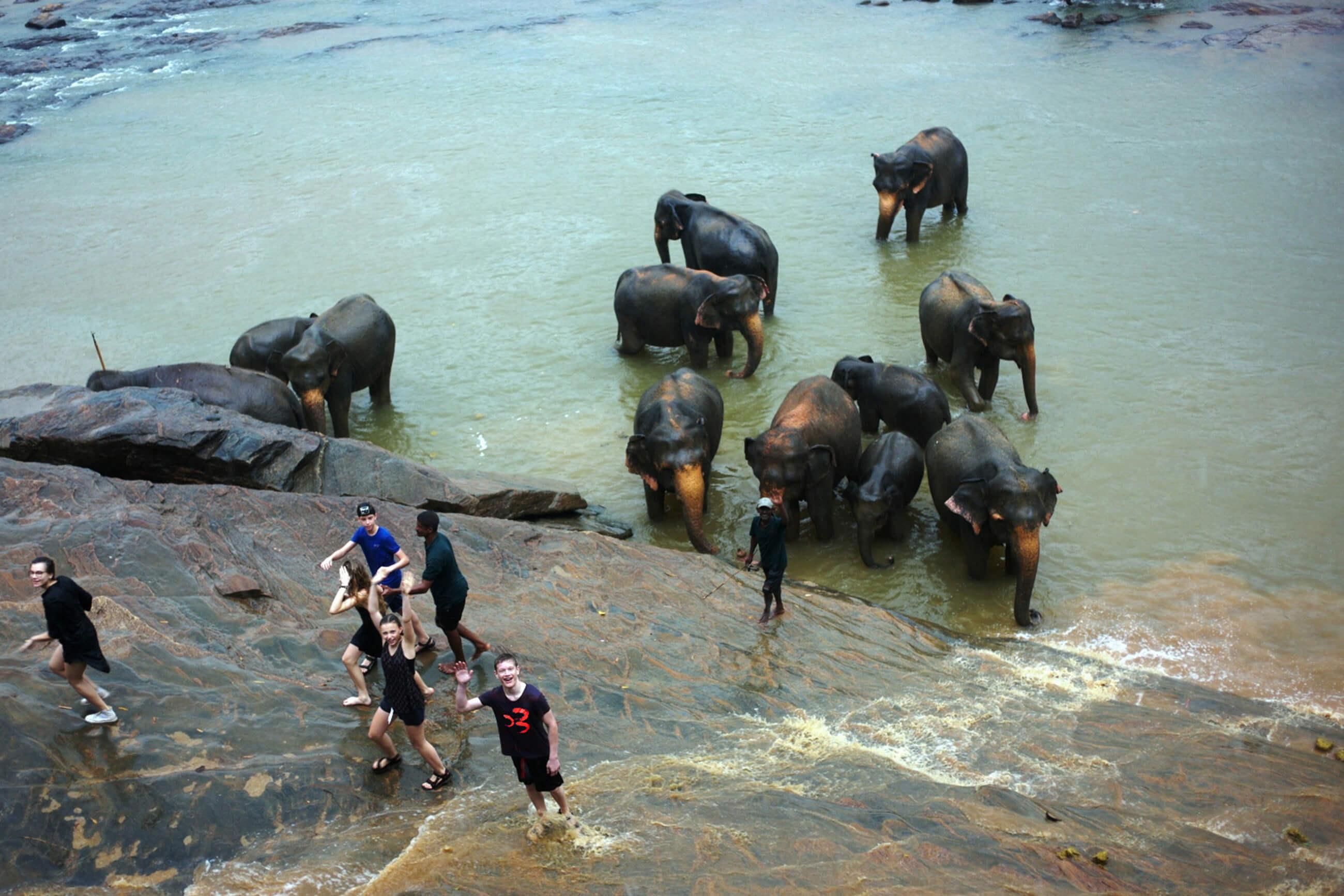 https://bubo.sk/uploads/galleries/7521/srilanka_family_bubaci-nadseni-z-kupania-sa-so-slonami.-nevadi-ze-prave-prsi_nove.jpg