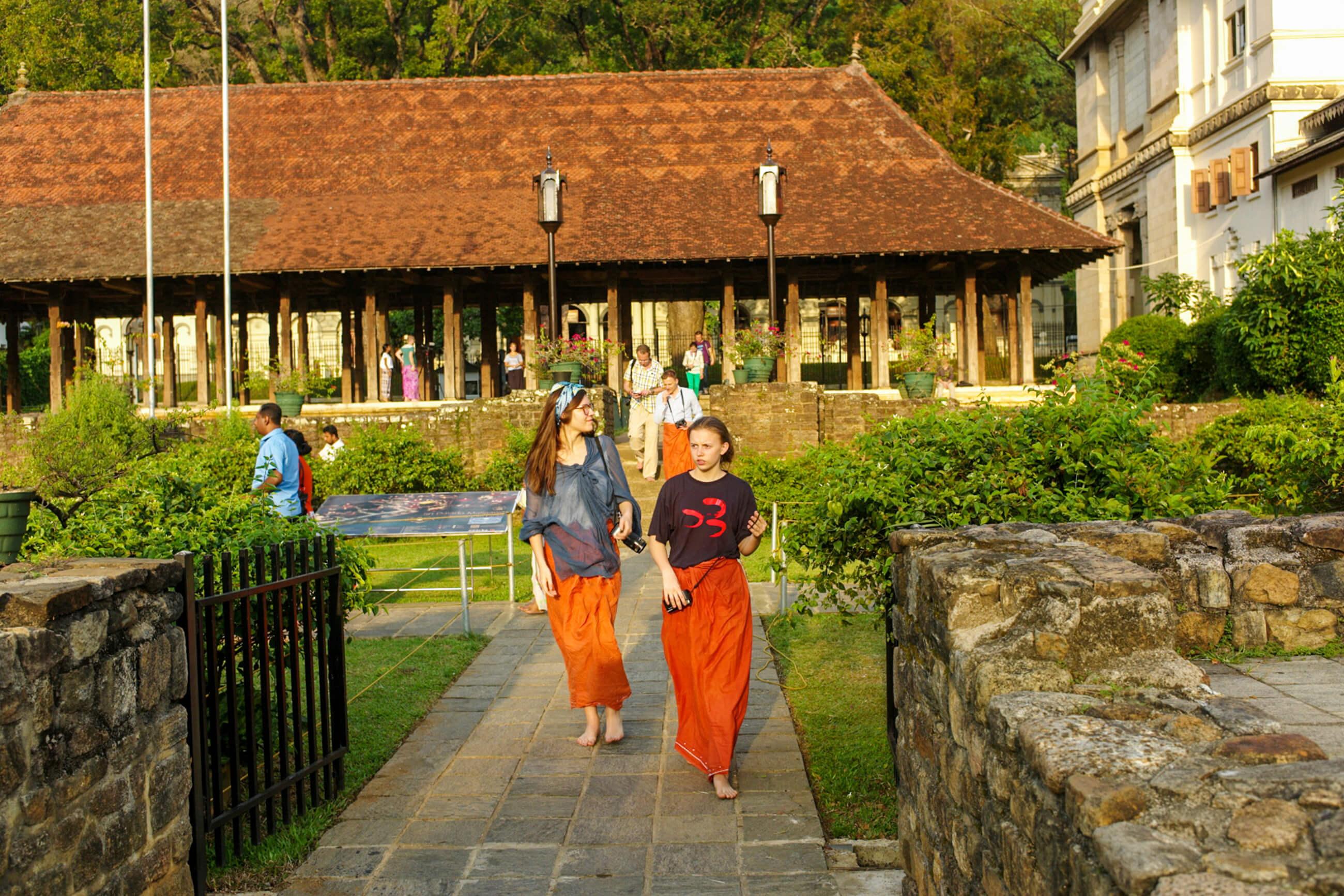https://bubo.sk/uploads/galleries/7521/srilanka_family_male-bubacky-v-kandi_nove.jpg