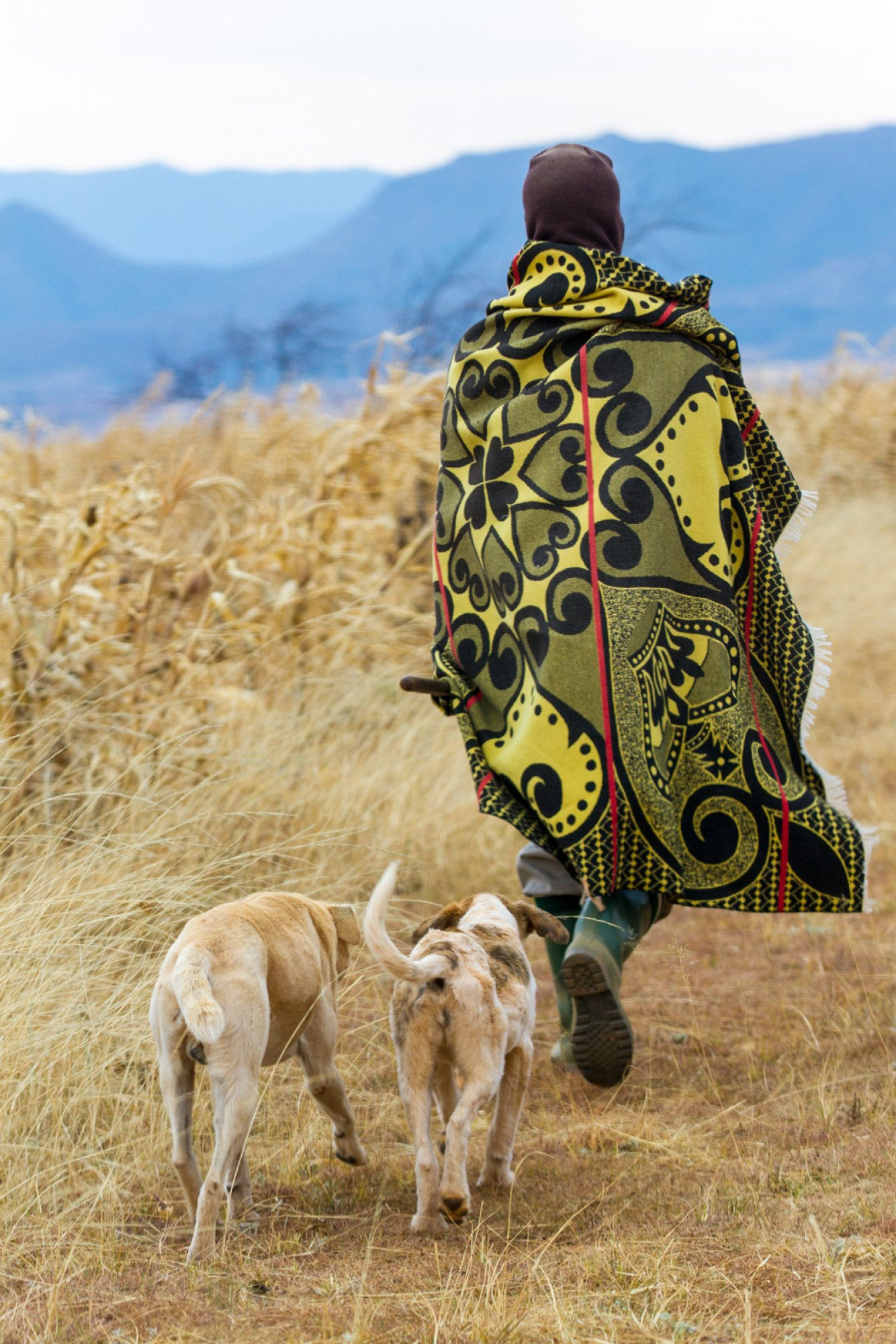 https://bubo.sk/uploads/galleries/7526/lesotho-unidentified-basotho-man-with-2-dogs-wearing-traditional-blanket-lesotho.jpg
