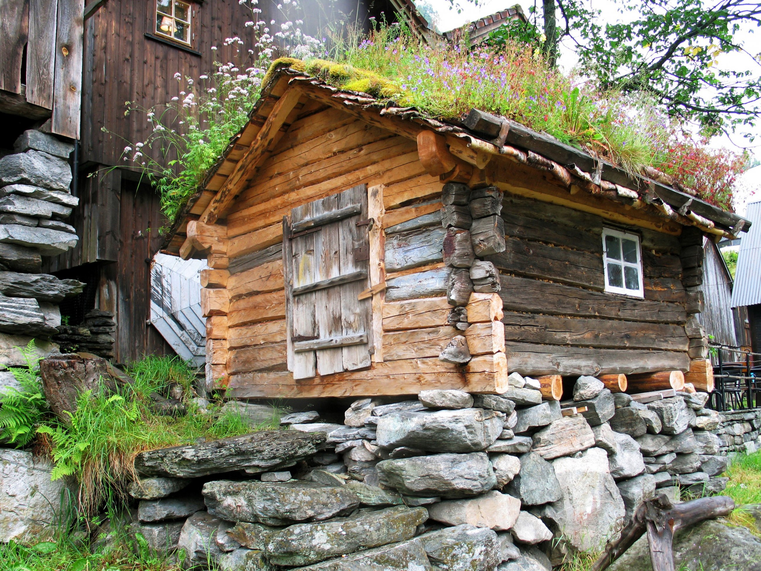 https://bubo.sk/uploads/galleries/7531/norsko-lod-miso-gaj-img-6544.jpg