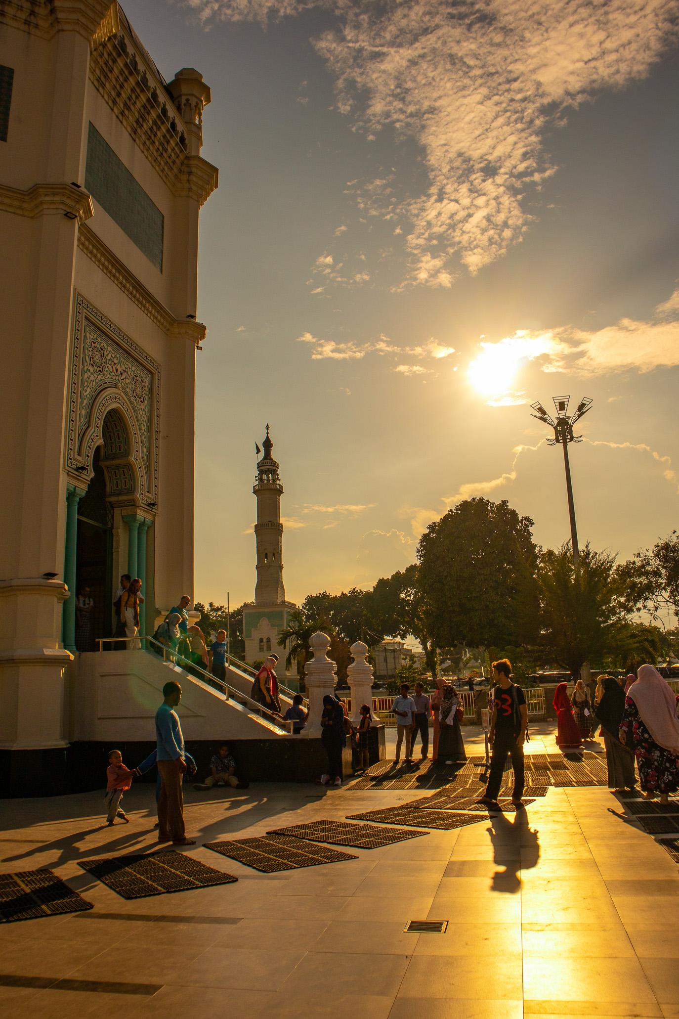 https://bubo.sk/uploads/galleries/7542/tomashornak_indonezia_sumatra_img_0020-1-14.jpg