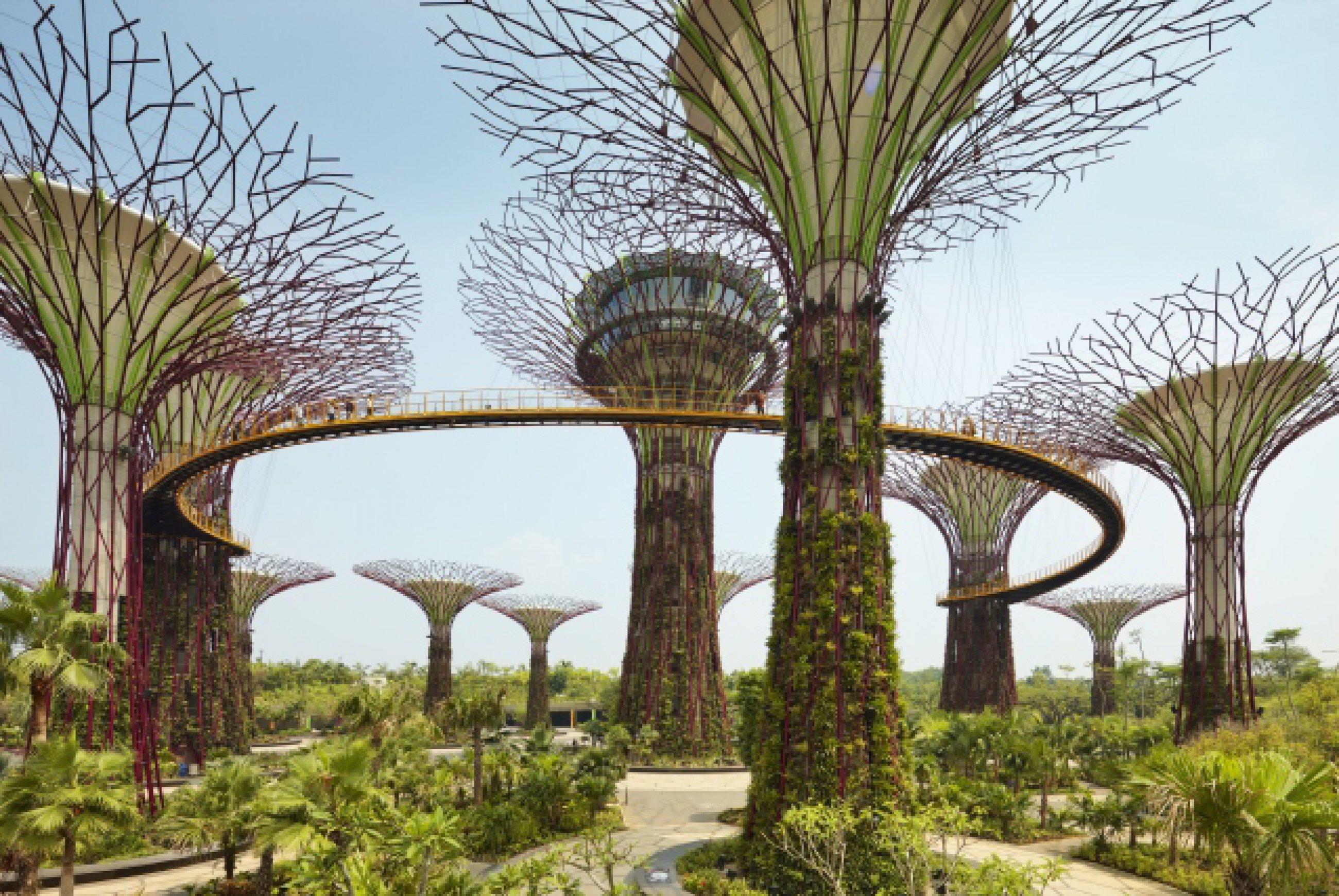 https://bubo.sk/uploads/galleries/8377/gardens-by-the-bay-singapore.jpg