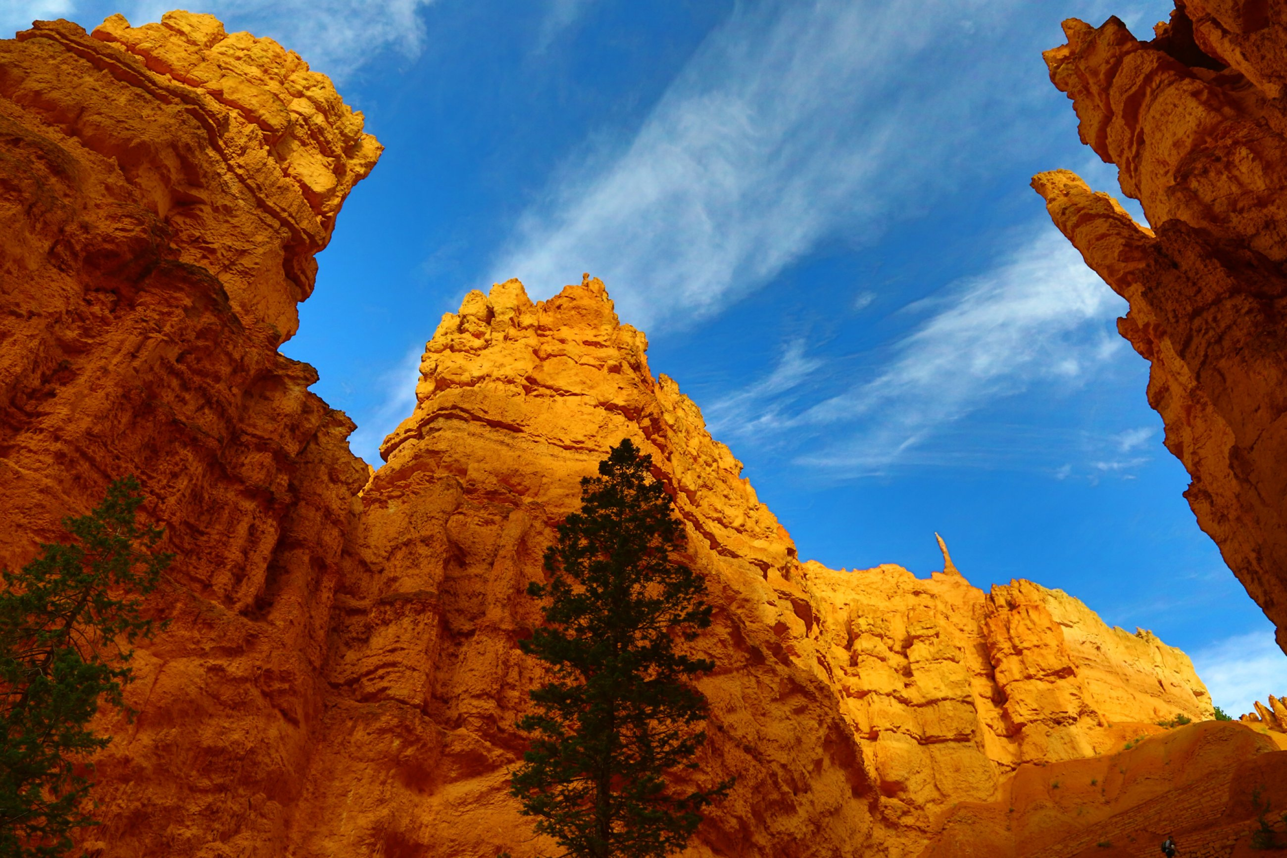 https://bubo.sk/uploads/galleries/8379/usa-zapad-bryce-canyon.jpg